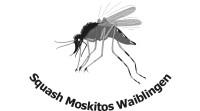 Squash Moskitos Waiblingen