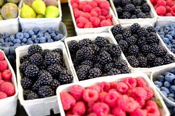 Saisonkalender Obst