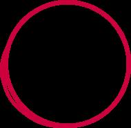 Logo Springseil