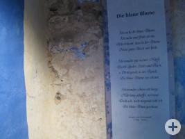 WN_Hochwachtturm_Blaue_Blume