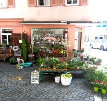 Gebäude Rosenladen